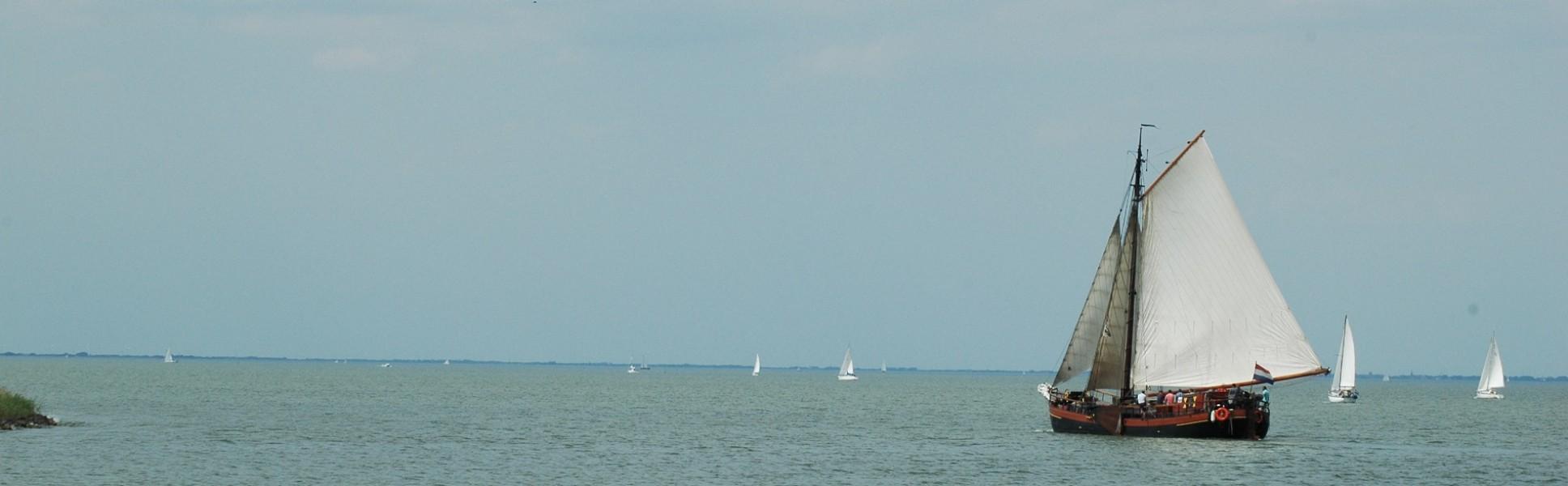 Segelausflug auf das IJsselmeer